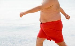 Fettspeicher Hormon