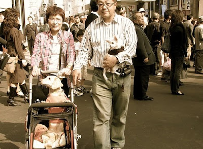 Casi 4 de cada 10 hogares en Japón en 2035 estarán formados por una sola persona