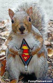 supersquirrel