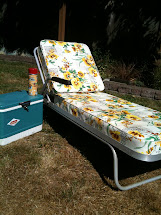 Seattle Junk Love Sold- 60' Vintage Aluminum Chaise