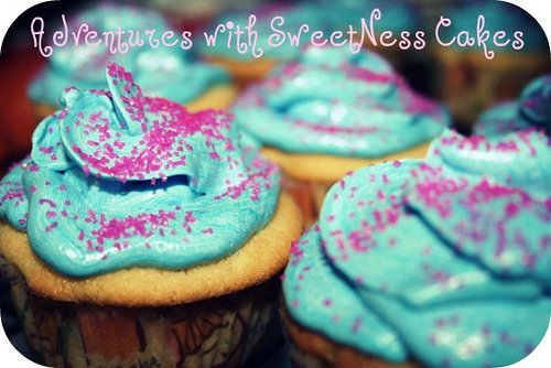 Adventures with SweetNess Cakes