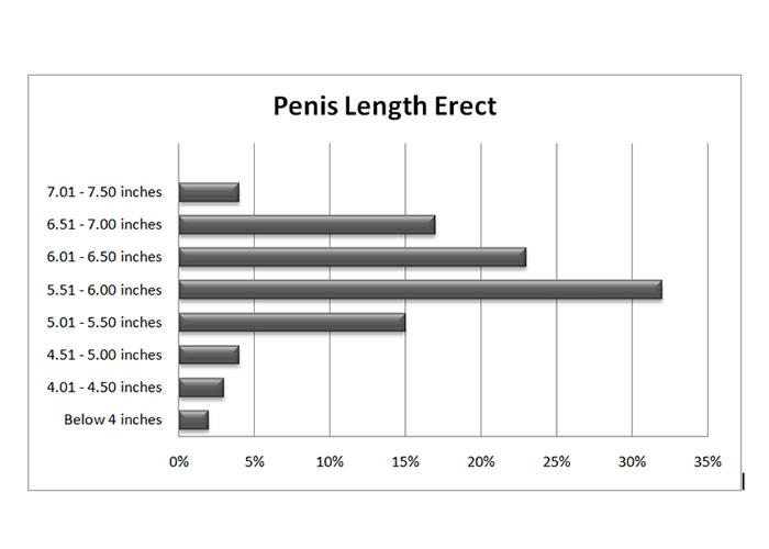 average penis size for women