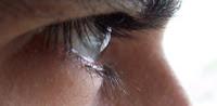 O olho da escrita