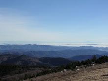 Vue panoramique depuis l''Aigoual.