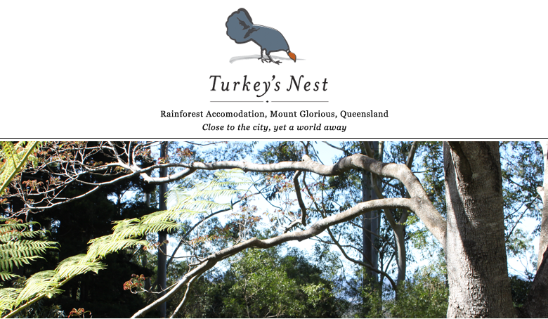 Turkey's Nest Rainforest Accommodation, Mt Glorious