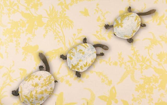 emma hack body artist, painted tortoises