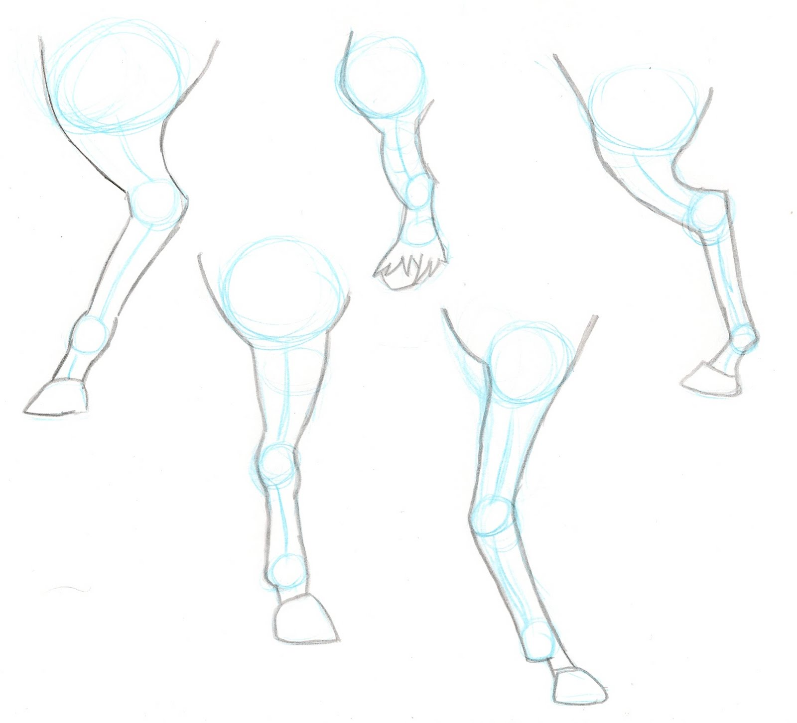 It is a photo of Inventive Horse Legs Drawing