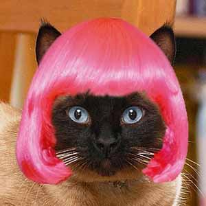 kimo-wig.jpg
