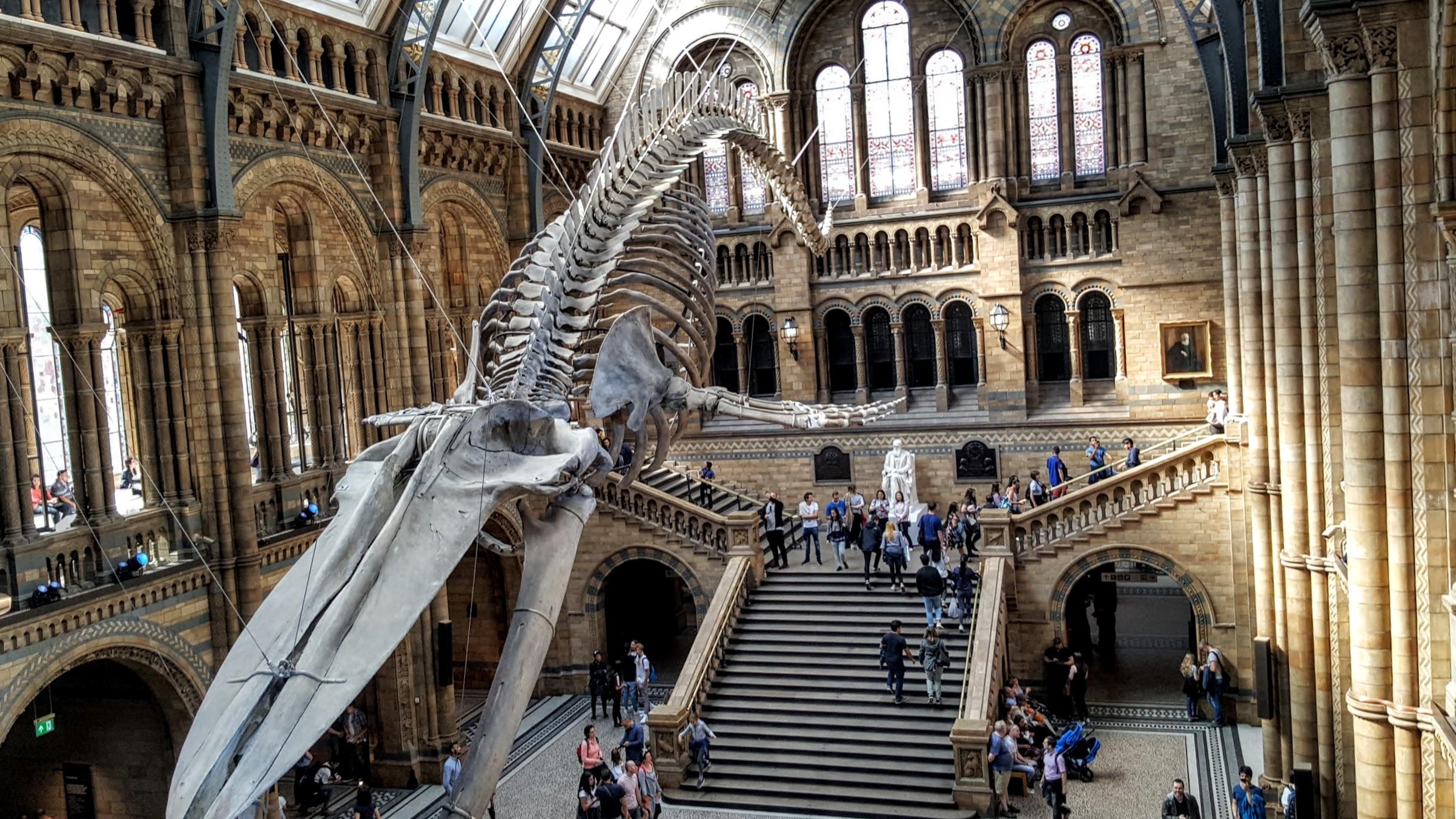 Londra'da gezilecek yerler, müze, çocukla seyahat, irem sunar özat