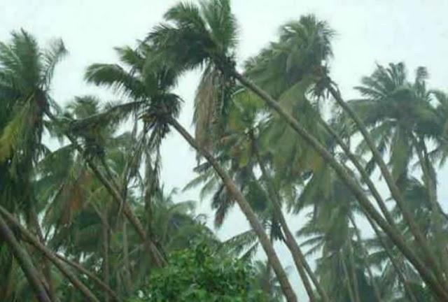 'फैनी' तूफान को लेकर मौसम विभाग ने जारी की चेतावनी, अगले 24 घंटे खतरनाक
