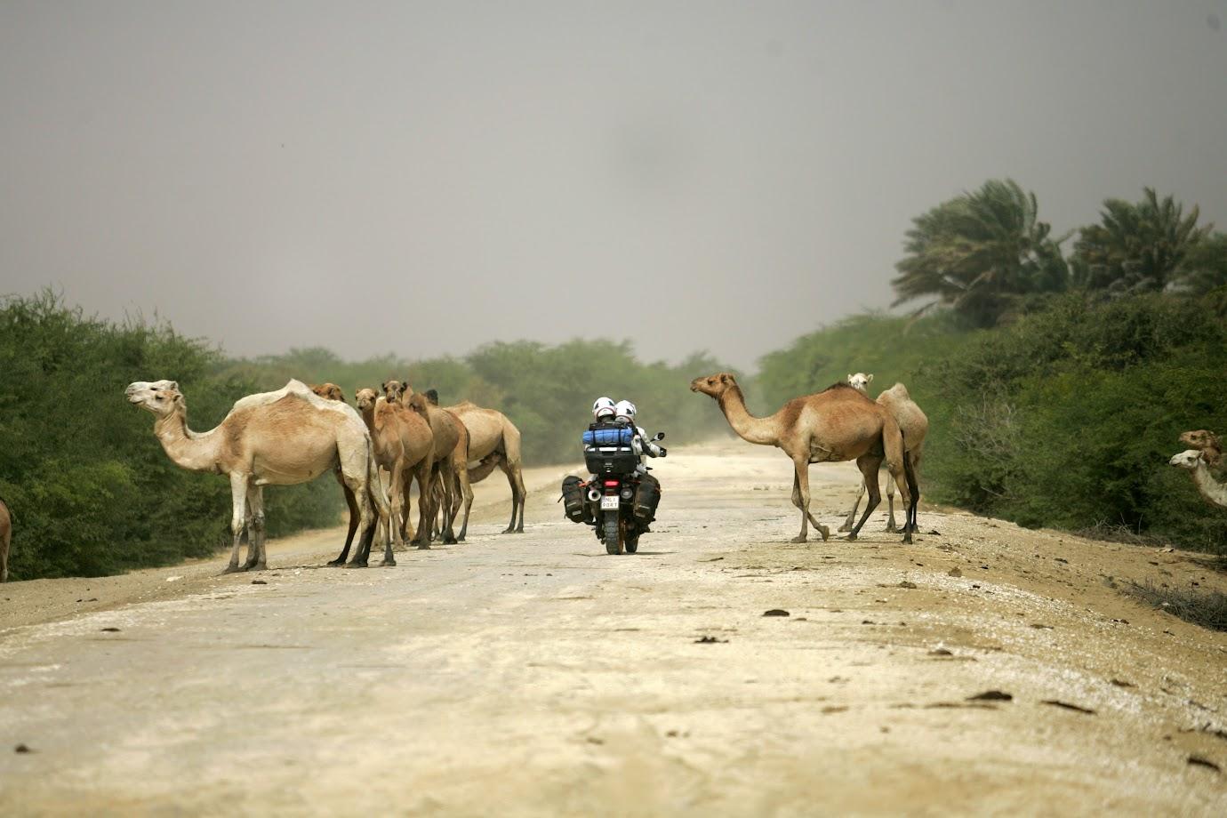 wyprawa motocyklowa do Senegalu