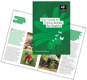 FREE Guide to Taking Action for Insects