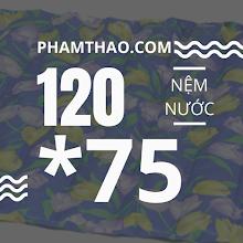Nem nuoc Ngoc Thao 1m2x75cm