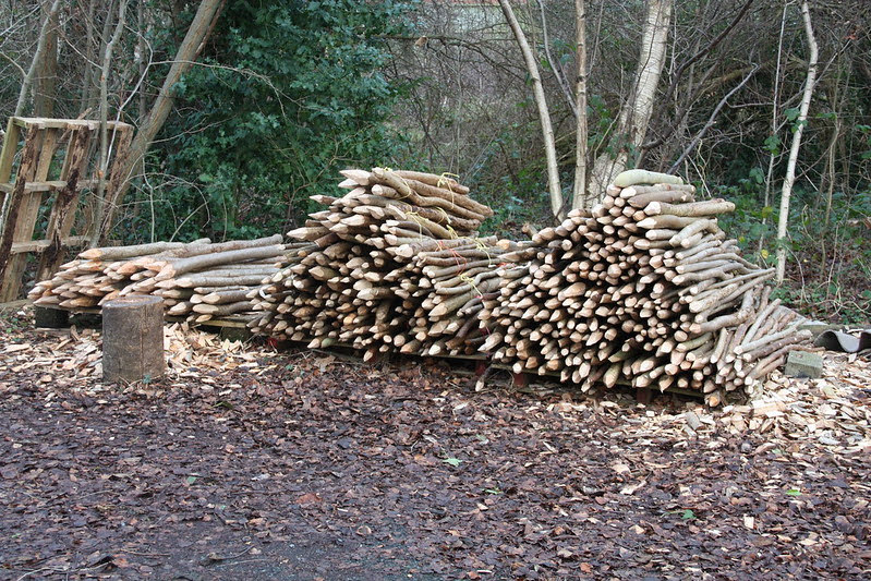 Coppiced poles