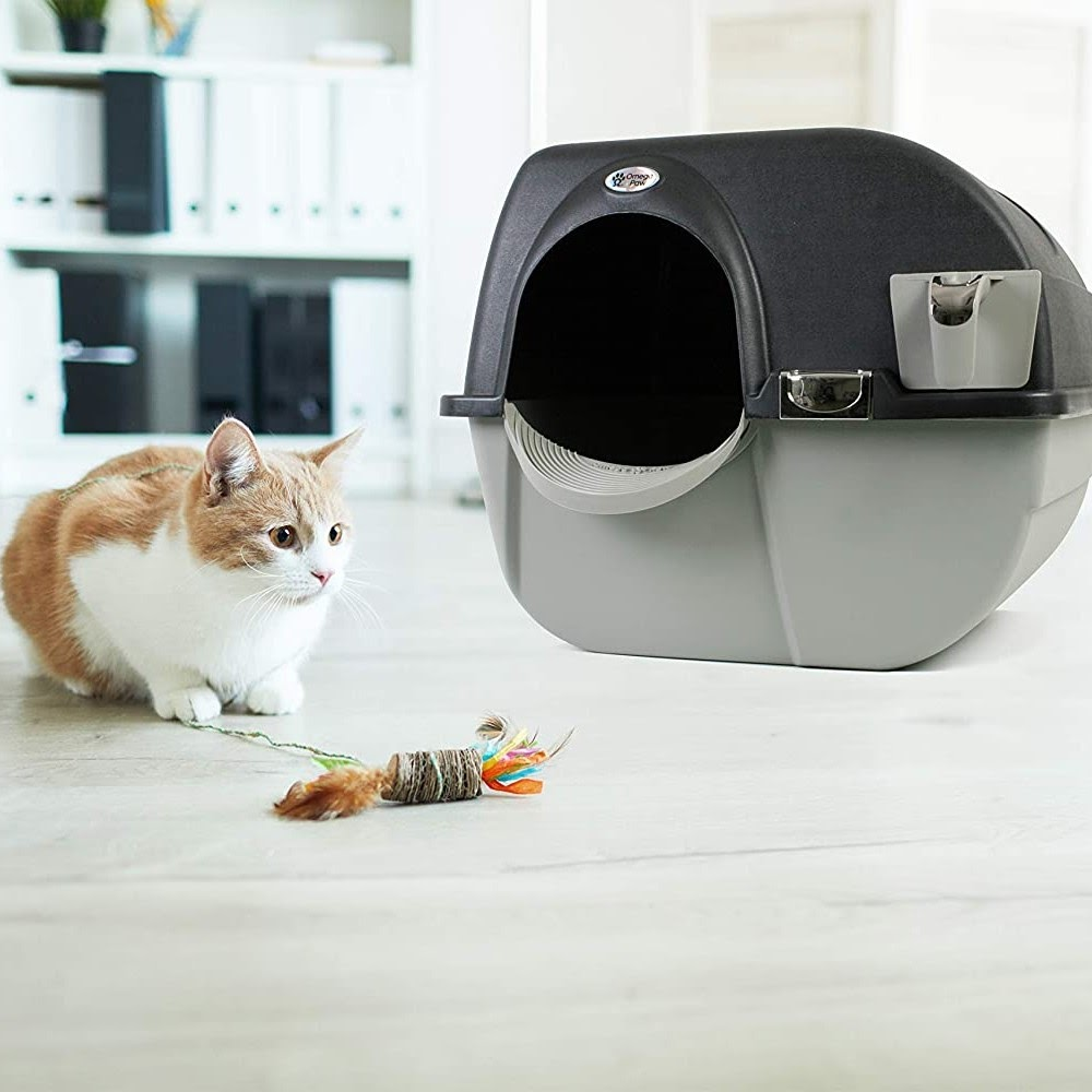 Top 5 the best automatic litter box