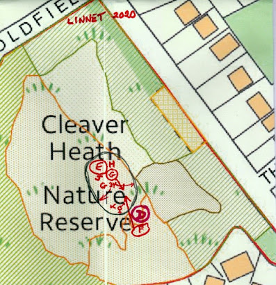 Map of linnet sightings