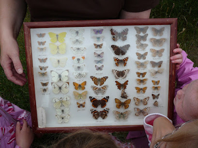 The butterfly case with all butterfly species recorded at the park
