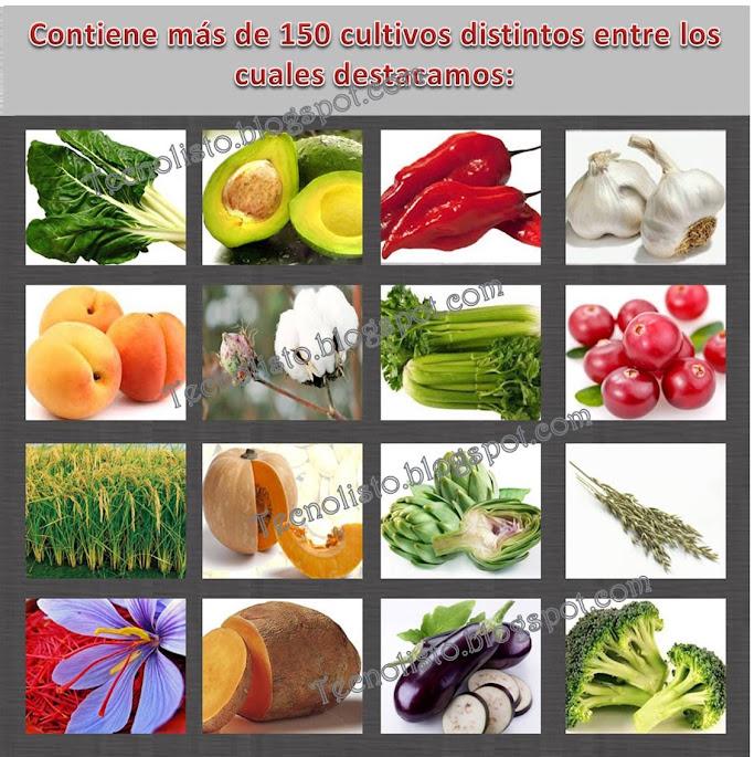 """""""Cultivo de Frutas y Hortalizas2"""""""
