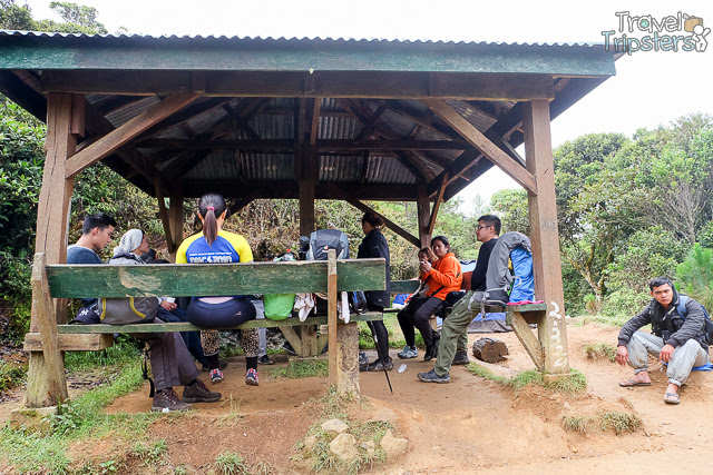 pulag camp 1